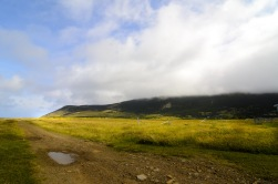 A few of the sights along the way to Gros Morne.