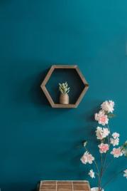 Hexagon Shelf - Timber Grove Studios